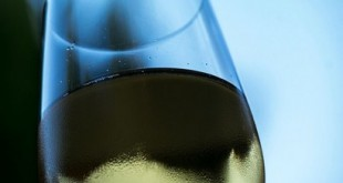 vini bianchi siciliani