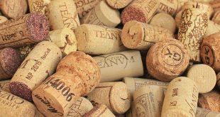 export vini